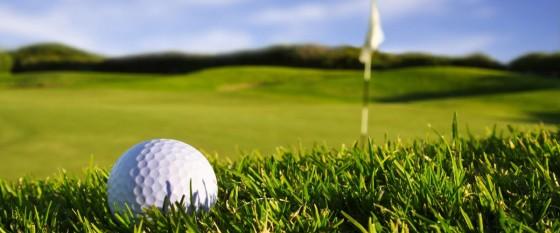Ti Piacerebbe giocare a golf?